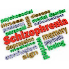NUR164 - Schizophrenia (1.0 HR)
